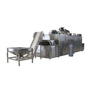 Techase Sludge Belt Dryer for Biomass Czz