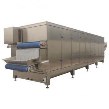 Automatic Tunnel Car Wash System Supplier in China