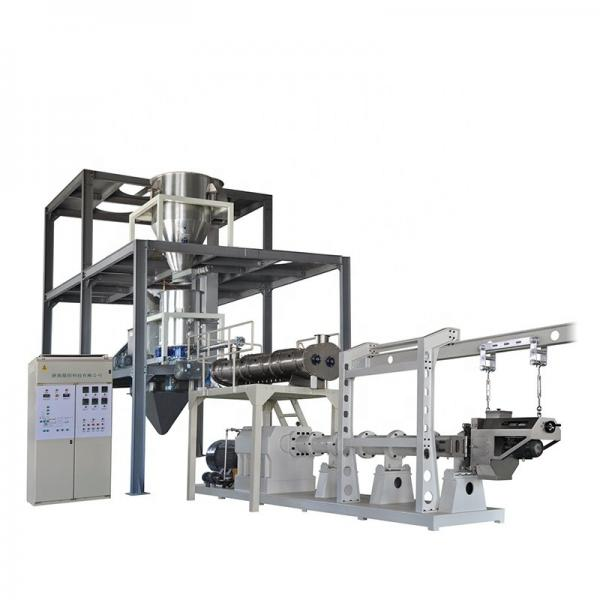 Ce Standard Full Automatic Corn Snacks Kurkure Processing Line