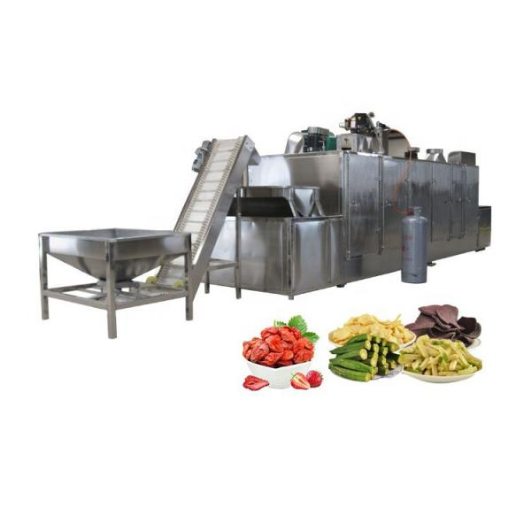Farm Farming Agricultural Agriculture Rice Food Vegetable Meat Fruit Drying Processing Making Freeze Dryer Machine