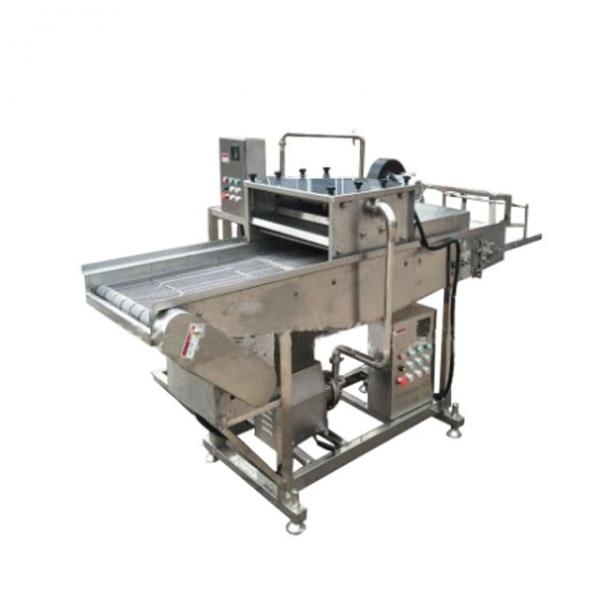 Most Popular Bacon Batter Covering Machine for Sale
